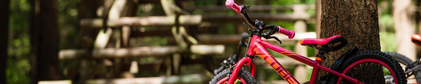 Bicicletta per bambini 16 pollici