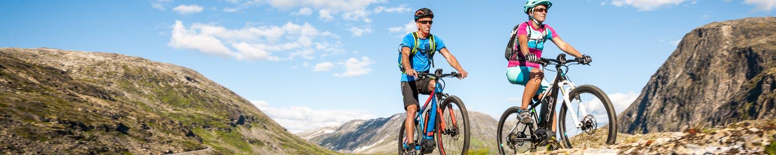 Biciclette-Elettriche a partire da 1799 €