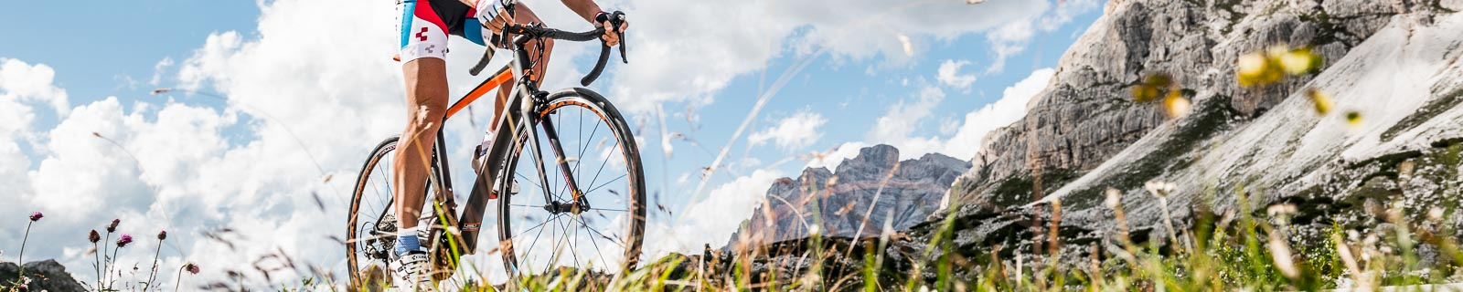 Biciclette da Strada per Donne