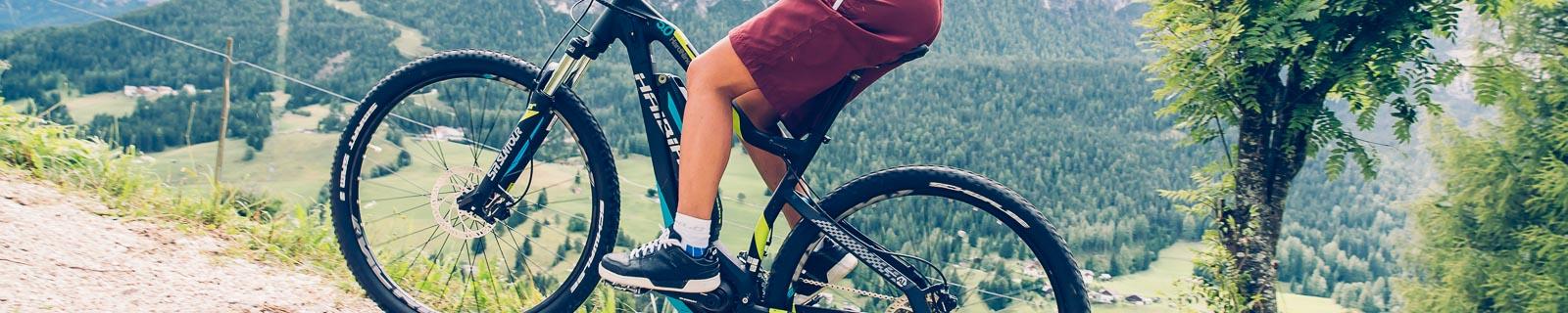 Biciclette-Elettriche