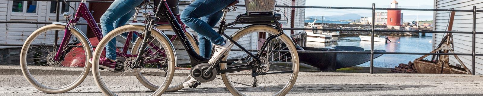 Bicicletta da Trekking per principanti